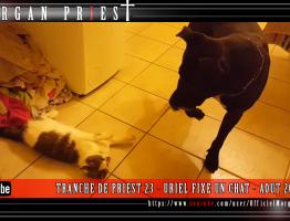 TRANCHE-DE-PRIEST-23---URIEL-FIXE-UN-CHAT---AOUT-2016