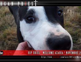 rip-uriel-welcome-azaria-novembre-2016